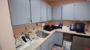 PHOTO IMAGES-Camino Seco Pet Clinic AZ (108 of 135) [800x600]